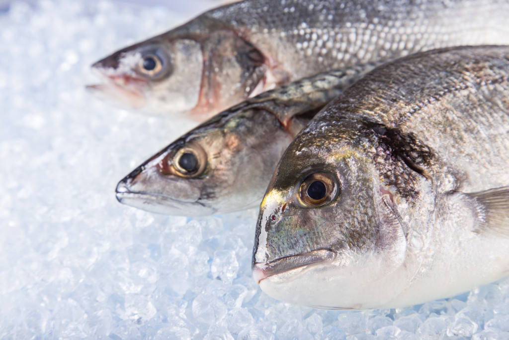 Fresh sea fishes on crushed ice.
