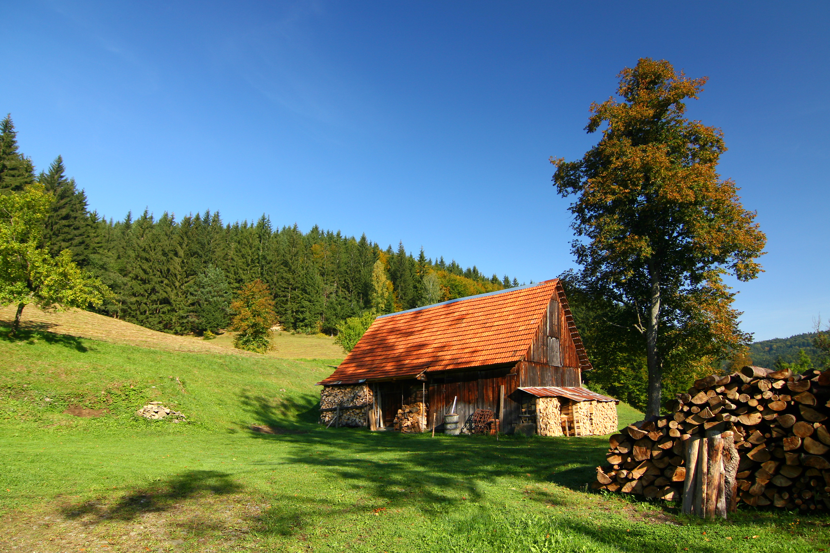 weekend house and beautiful sunny morning