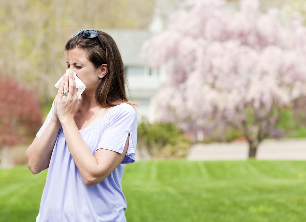 Jak přelstít alergeny?