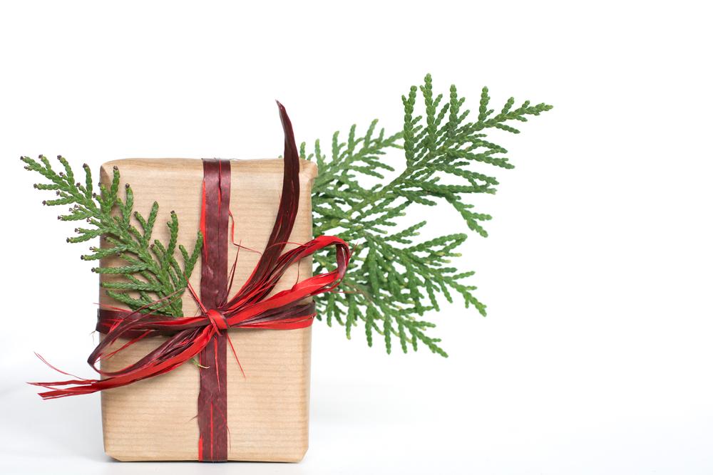 Šetřete o Vánocích sebe i přírodu. Jen balicí papír by pokryl dálnici z Prahy do Ostravy